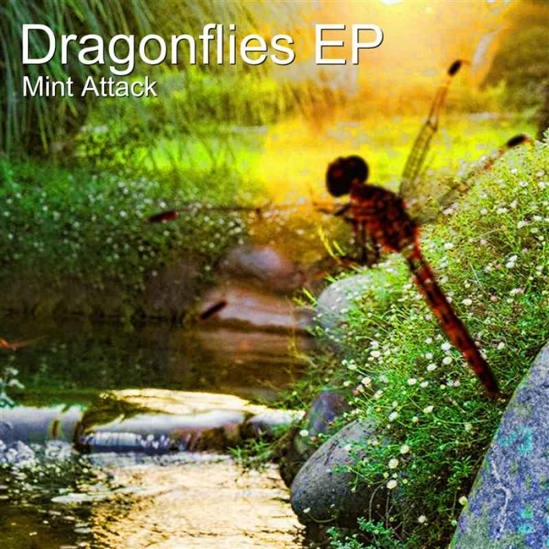 Cover of Dragonflies