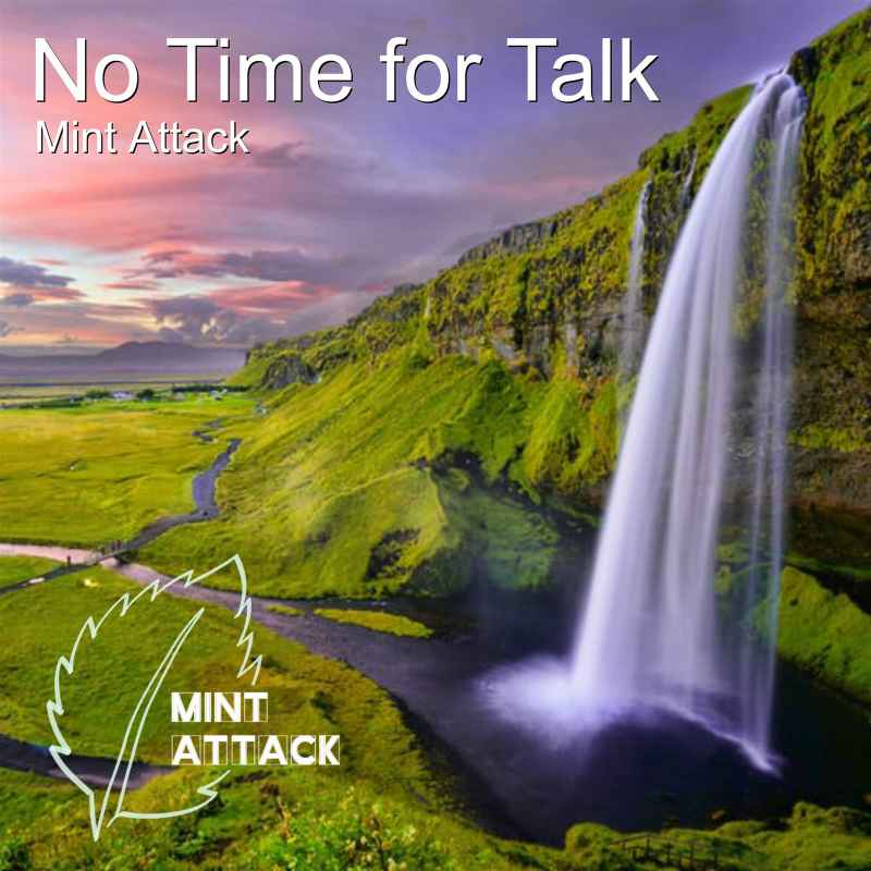 Cover of No Time for Talk